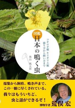 画像1: 日本の鳴く虫 2018年8月8日発売(新刊!)