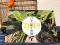 日本の鳴く虫歴2019(鳴く虫のシーズンが分かるカレンダー)
